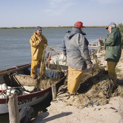 Pescadors recollint la pesca a prop de la desembocadura del riu Ebre  (Miguel Raurich)