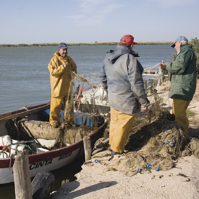 Fishermen gathering the fish near the mouth of the river Ebro  (Miguel Raurich)