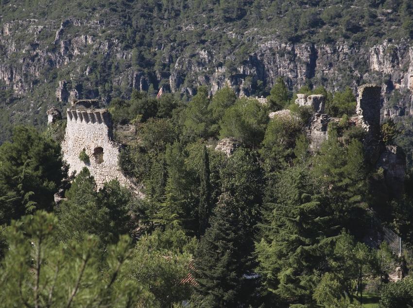 Ruinas del castillo  (Miguel Raurich)