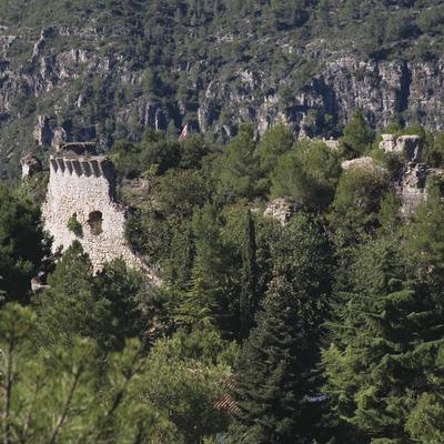 Ruïnes del castell  (Miguel Raurich)