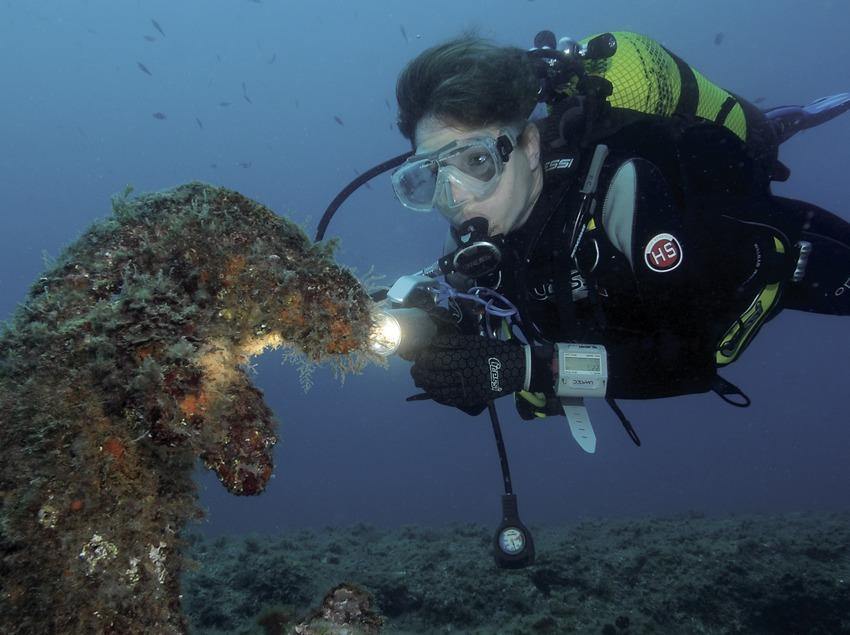 Каменная фигура дельфина на входе во второй туннель Порт-Сальви