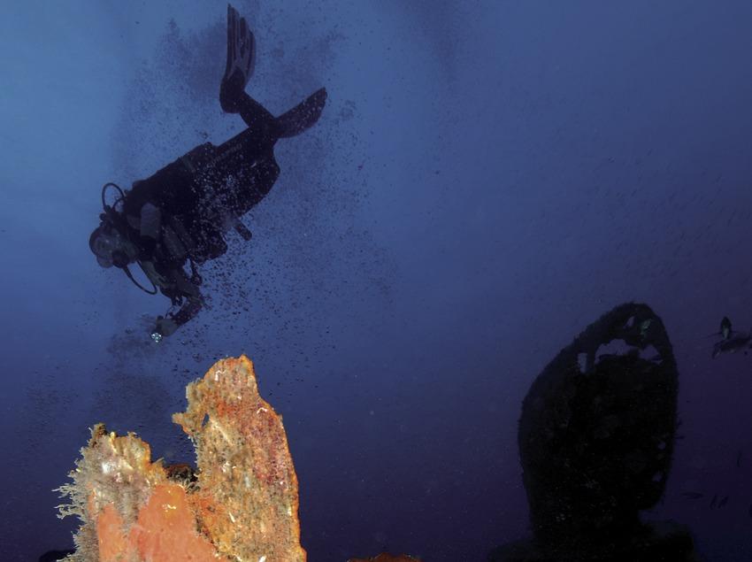 Plongée à proximité de l'épave du Boreas au promontoire de Palamós