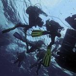 Submarinistes tornant a l'embarcació després d'una immersió als Canons de Tamariu