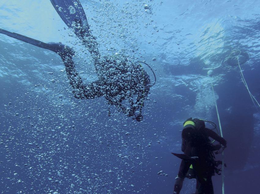 Plongeurs retournant à l'embarcation après une immersion dans les fonds marins des îles Formigues