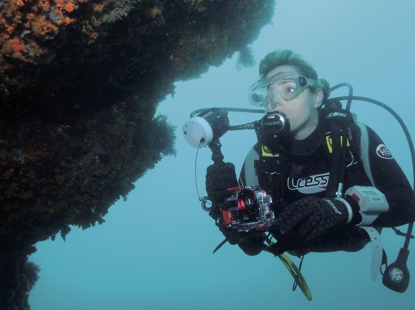 Unterwasserfotografin neben einer von gelben Krustenanemonen (Parazoanthus axinellae) bedeckten Wand am Meeresgrund der Bucht Caleta de Palamós oder Cala de Morro del Vedell
