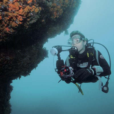 Fotògrafa submarina a prop d'una paret coberta d'anemone incrustant groga (Parazoanthus axinellae) al fons marí de la Caleta de Palamós o Cala de Morro del Vedell