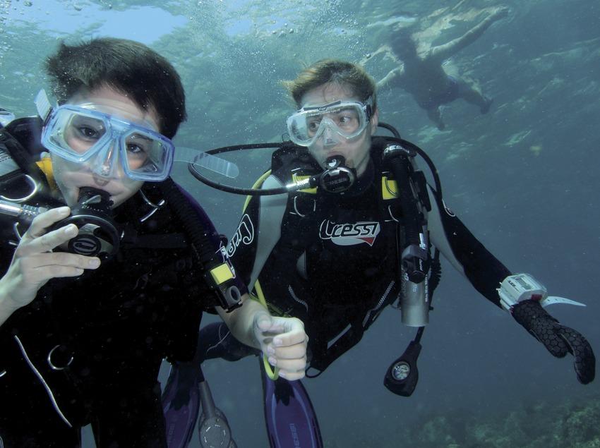 Primera inmersión en el fondo marino de la Caleta de Palamós o Cala de Morro del Vedell