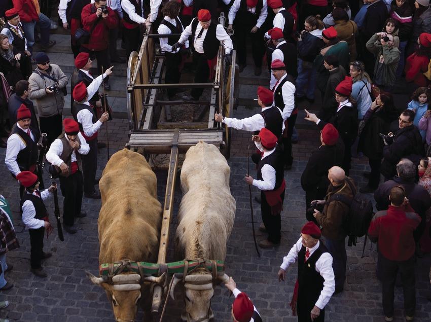 Arrivée à l'église pendant la Festa del Pi (fête du pin). (Oriol Llauradó)