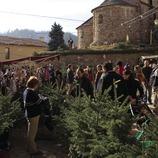 Parades de la Fira de l'Avet (Oriol Llauradó)