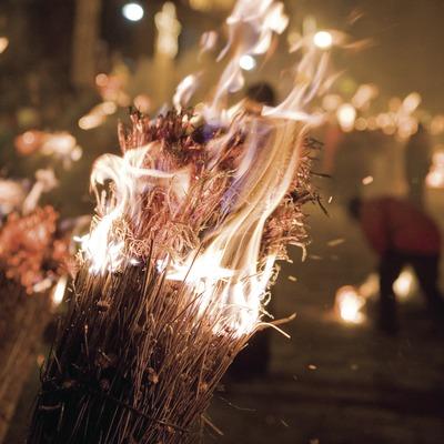 Detall d'una faia cremant durant la festa de la Fia-Faia
