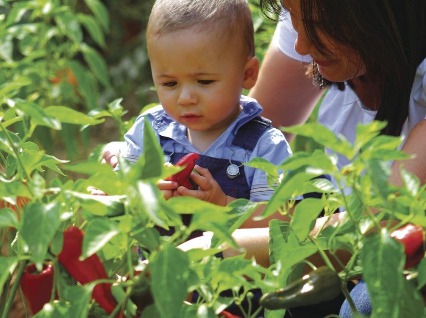 Niño en el Parc de les Olors.