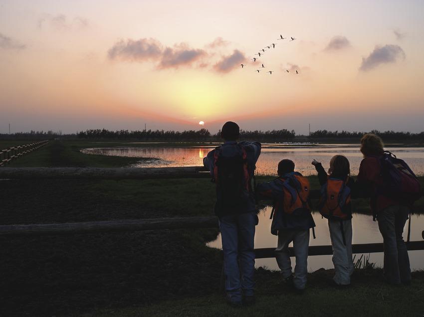 Observando aves al atardecer en el Parc Natural dels Aiguamolls de l'Empordà.  (Lluís Carro)