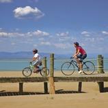 Ciclistes sobre les passarel·les del Parc Natural del Delta de l'Ebre  (Lluís Carro)