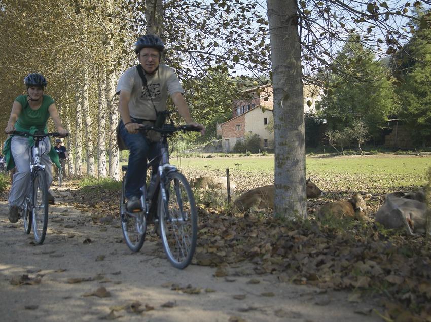 Sortida amb bicicleta de les Preses a les Planes d'Hostoles. Workshop Pirineus 2008  (Cablepress)
