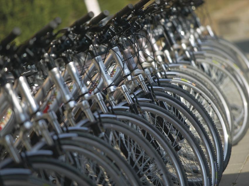 Bicicletes. Sortida amb bicicleta de les Preses a les Planes d'Hostoles. Workshop Pirineus 2008   (Cablepress)
