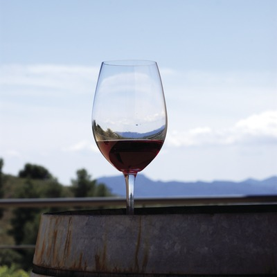 Dégustation de vins dans les caves Buil & Giné