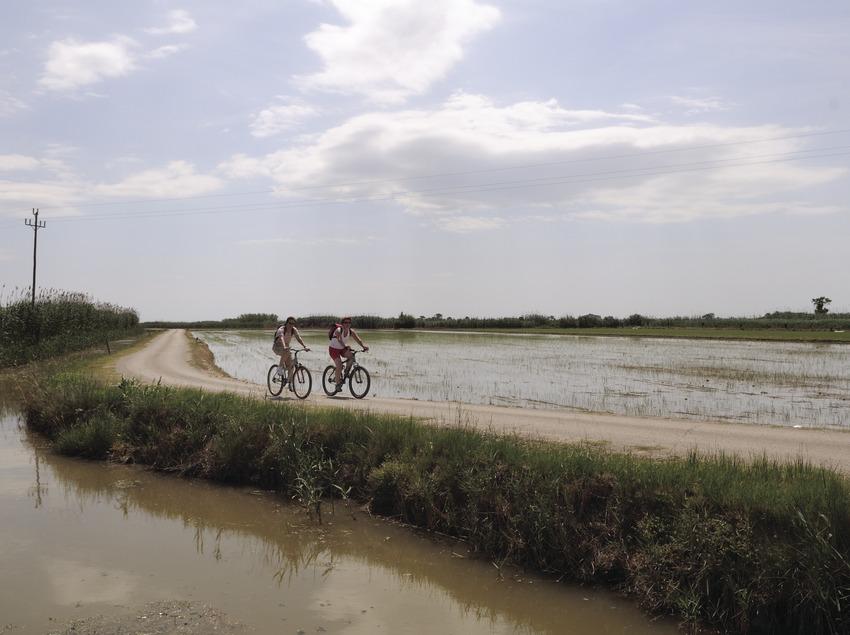 Randonnée à vélo dans le parc naturel du delta de l'Èbre