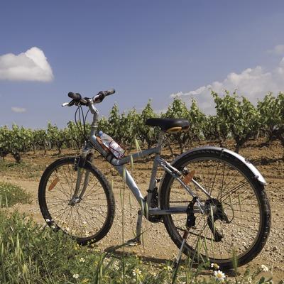 Bicicleta prop de les caves Castellroig (Marc Castellet Puig)