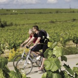 Bike and Wine VÍVID