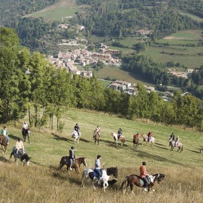Activitats grup B. Visita a l'hípica Mas Batlló, excursió a cavall. Workshop Pirineus 2008  (Cablepress)