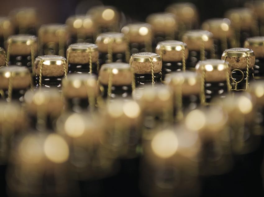 Бутылки с вином винодельческого хозяйства Castellroig