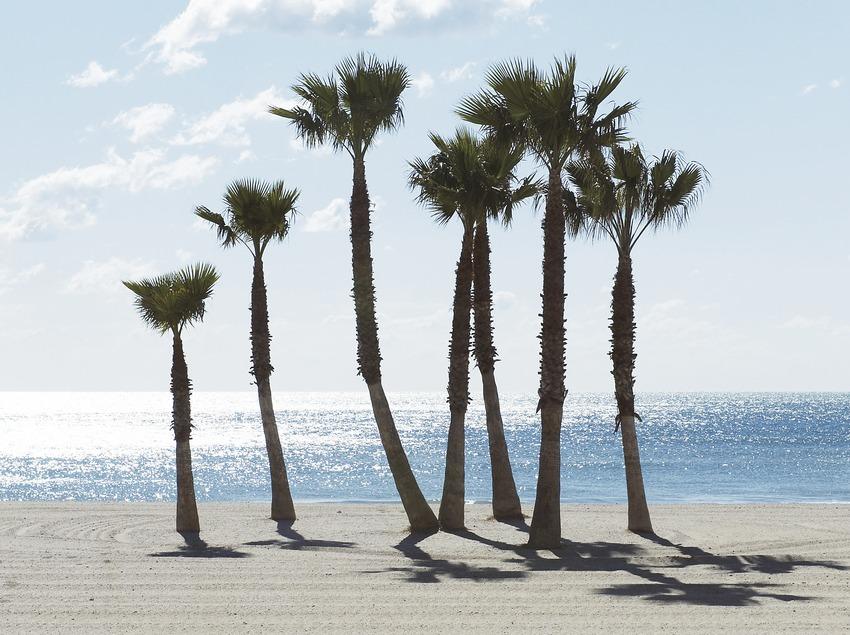 Terrassa de Le Méridien Ra Beach Hotel   (Imatges cedides per Le Méridien Ra Beach Hotel)