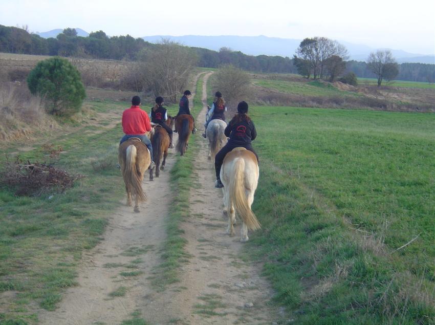 Equitació, excursió a cavall   (Imatges cedides pel Consell Comarcal del Gironès)