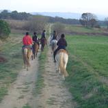 Un cap de setmana amb cavalls