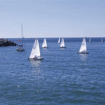 Competició de vela al Port Olímpic   (Foto-tècnia fotògrafs)