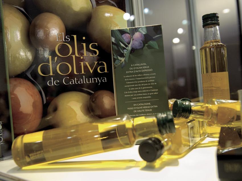 Libro Els olis d'oliva de Catalunya, con el cartel fotográfico y botellas de aceite (Marc Castellet)