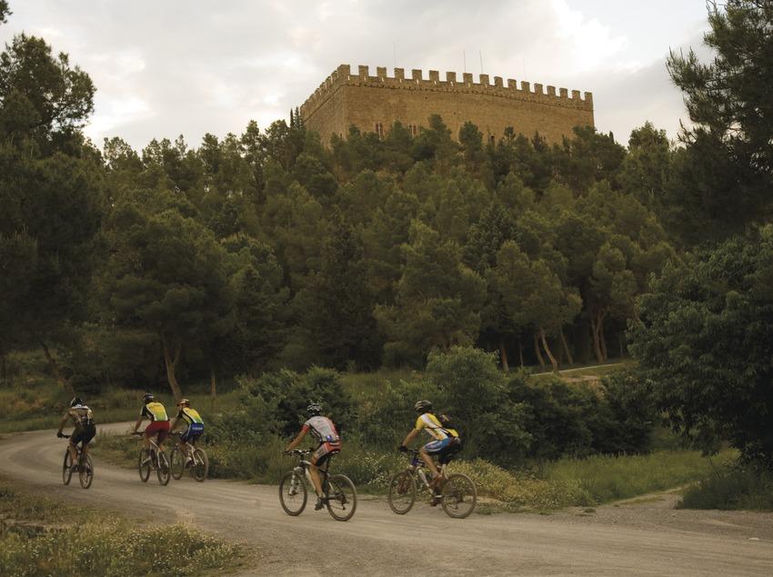 Castillo de Balsareny (Nano Cañas)