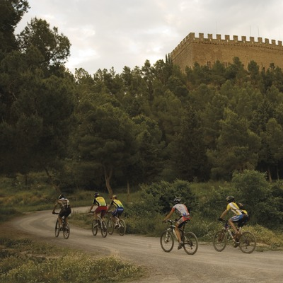 Castell de Balsareny (Nano Cañas)