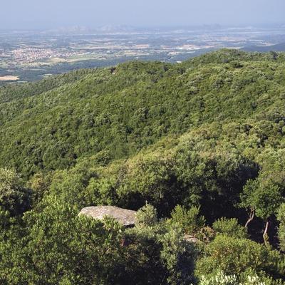 Serra de les Gavarres. Puig d'Arques (José Luis Rodríguez)