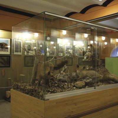 Museu de les Guilleries  (Imagen M.A.S.)