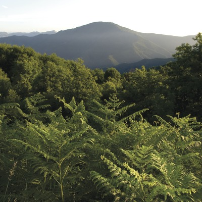 Espai Natural de les Guilleries-Savassona - Itinerario de Can Mateu