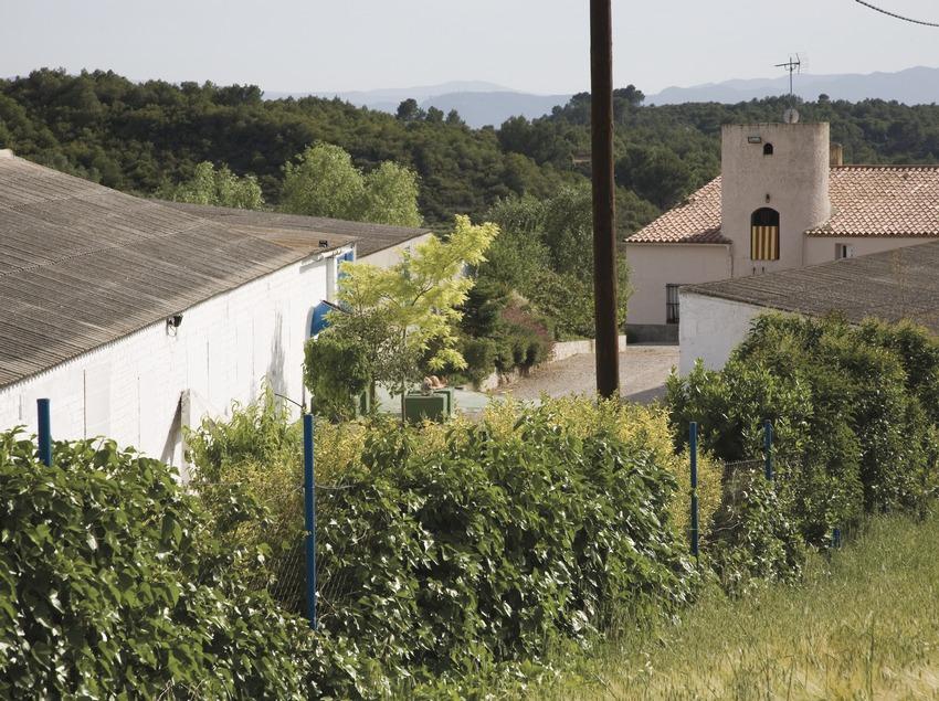 Granja de cargols Cal Jep. Exterior  (Imagen M.A.S.)