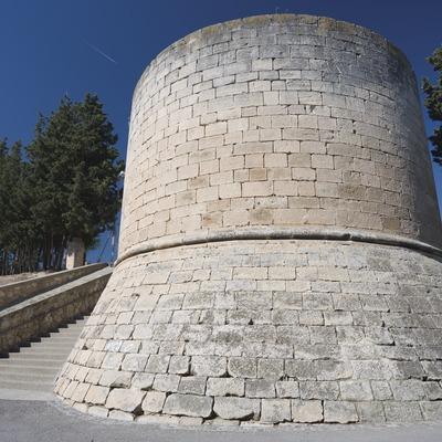 Castillo de los duques de Cardona (Nano Cañas)