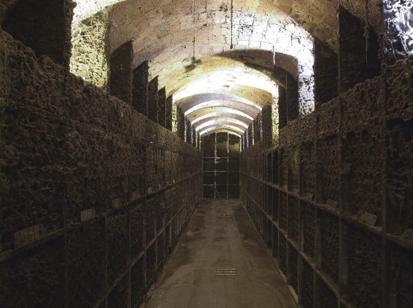 Caves Segura Viudas  (Imagen M.A.S.)