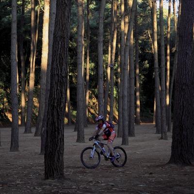 На горном велосипеде по Монтнегре