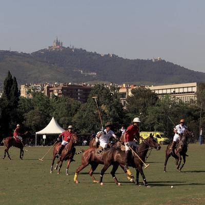 Reial Club de Polo