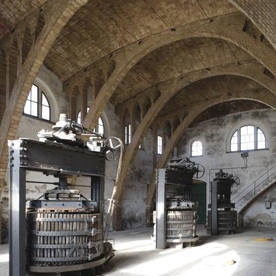 Celler Cooperatiu  (Imagen M.A.S.)