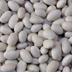 Sant Pau beans