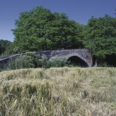 Pont d'en Bruguer (Juan José Pascual)