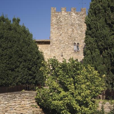 Castillo de Vullpellac (Juan José Pascual)