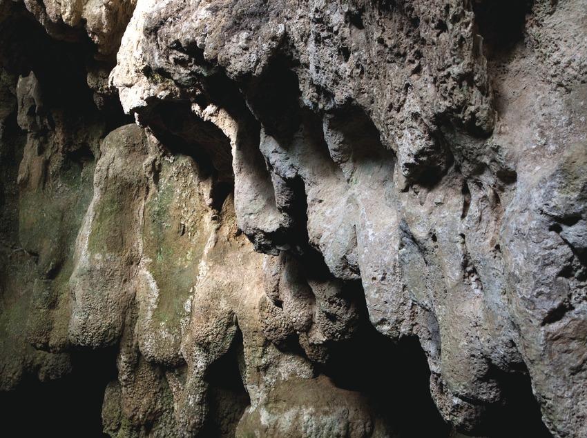 Parque de las Cuevas Prehistóricas de Serinyà (Juan José Pascual)
