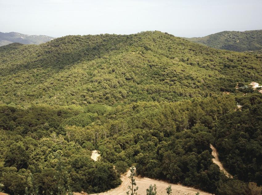 Roca del vall s la guia de municipis - Piscina la roca del valles ...
