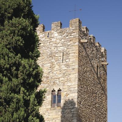 Castell de Vullpellac (Juan José Pascual)