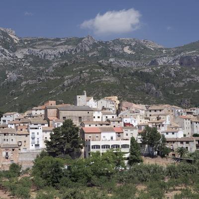 Ajuntament d'Alfara de Carles