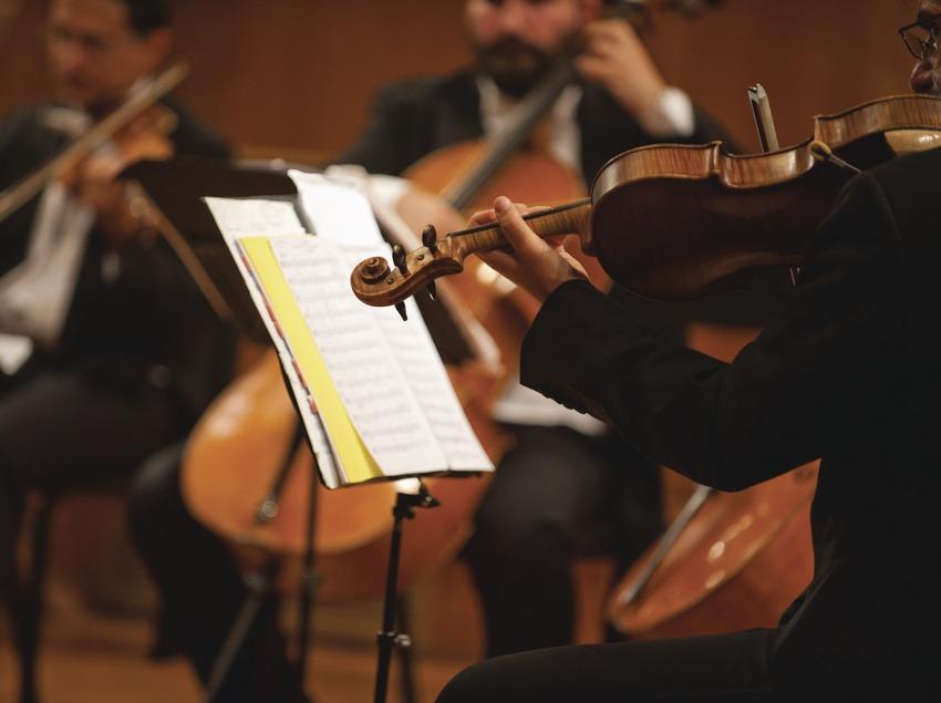 Festival Internacional de Música Pau Casals, Auditorio Pau Casals, detalle violoncelo i violines orquesta (I Solisti Veneti, ITA) (Marc Castellet Puig)