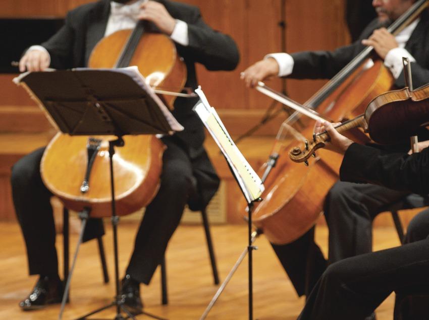 Festival Internacional de Música Pau Casals. Auditorio Pau Casals, detalle violoncelos orquesta (I Solisti Veneti, ITA), público (Marc Castellet Puig)